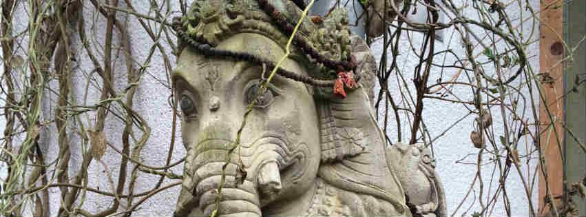 Wald - Ganesha bei Yoga Vidya, Westerwald